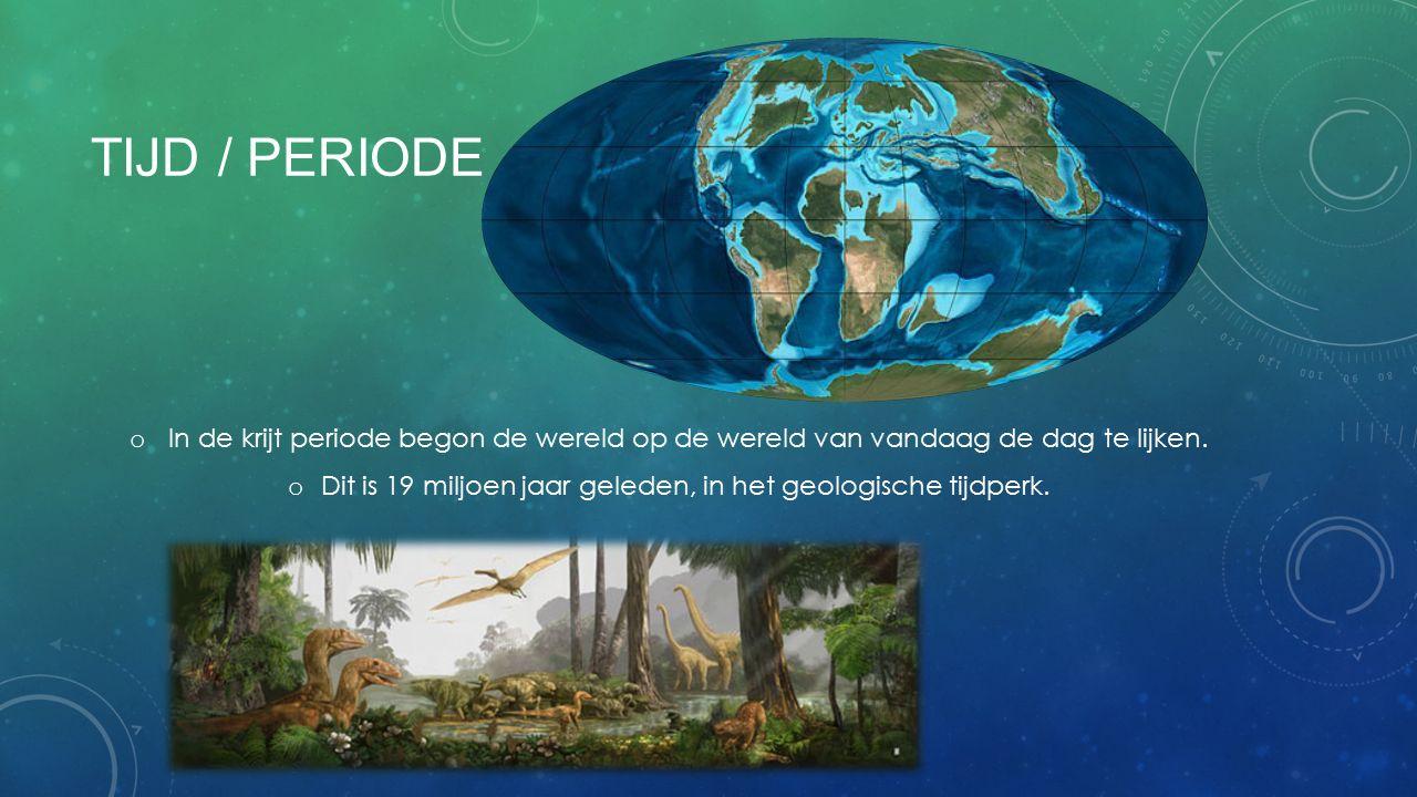 Dit is 19 miljoen jaar geleden, in het geologische tijdperk.
