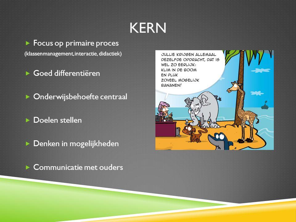 Kern Focus op primaire proces Goed differentiëren