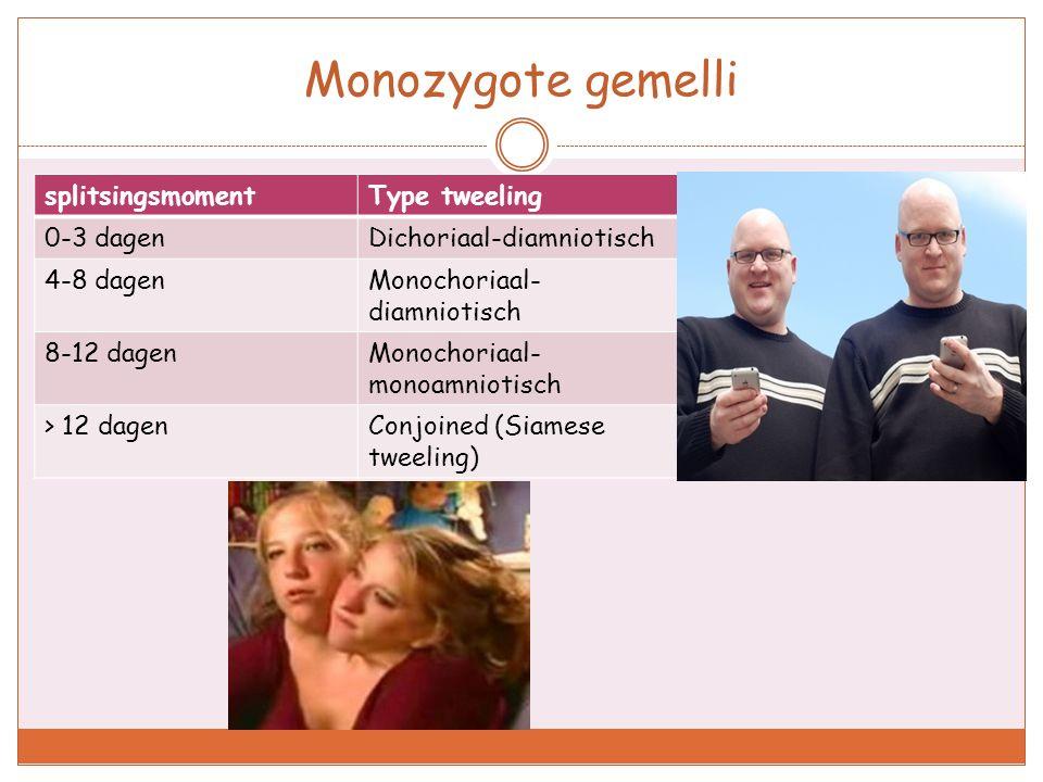 Monozygote gemelli splitsingsmoment Type tweeling 0-3 dagen