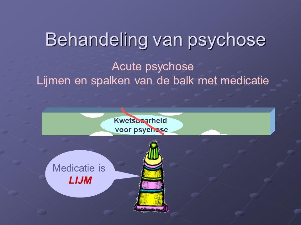 Behandeling van psychose