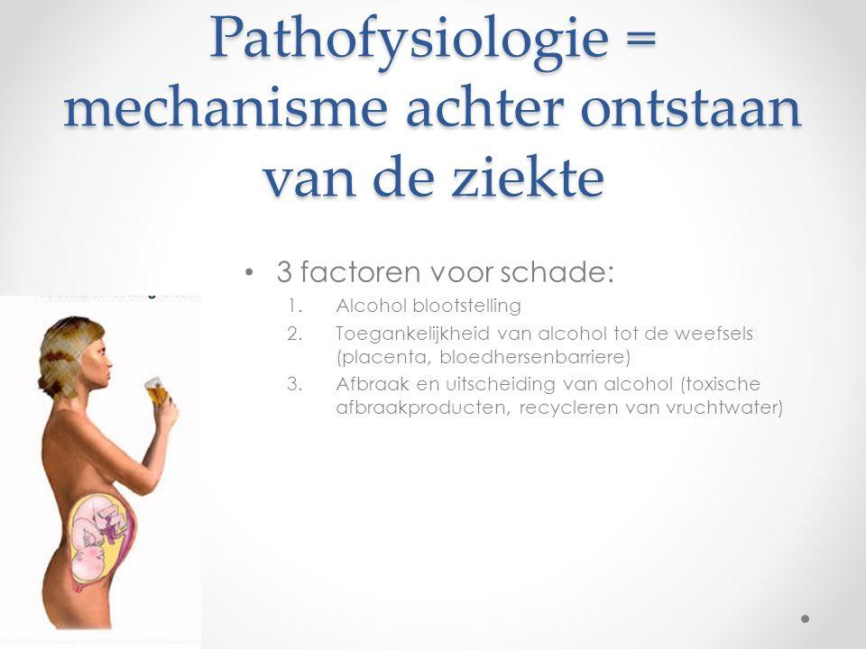Pathofysiologie = mechanisme achter ontstaan van de ziekte