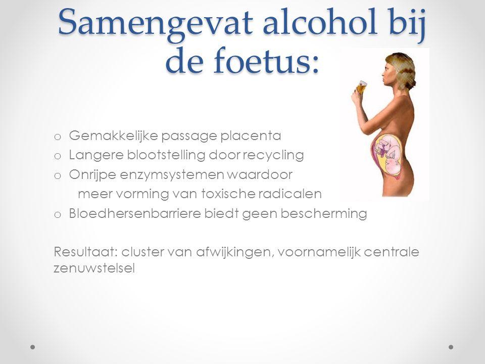 Samengevat alcohol bij de foetus: