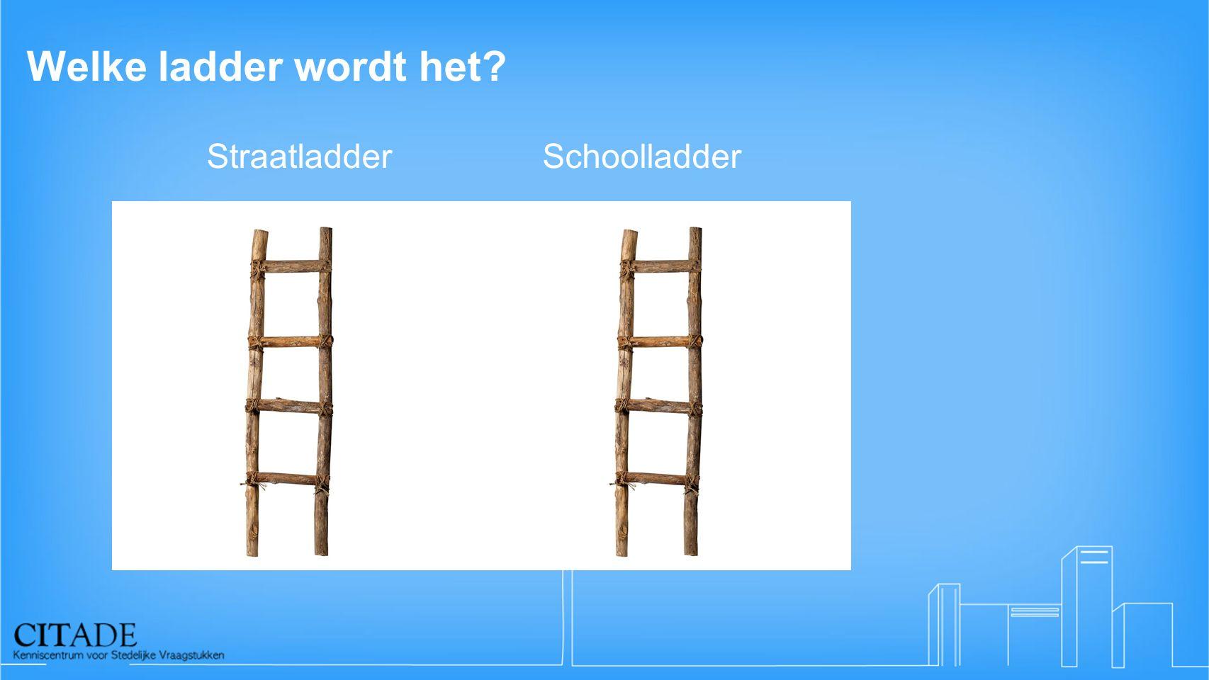 Welke ladder wordt het Straatladder Schoolladder