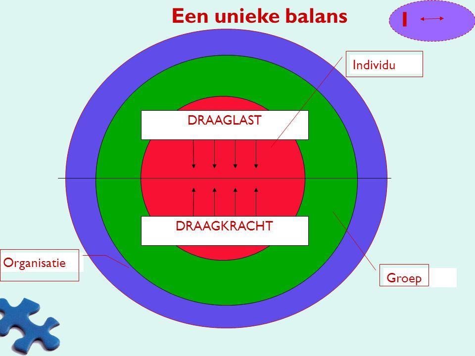 Een unieke balans I Individu DRAAGLAST DRAAGKRACHT Organisatie Groep