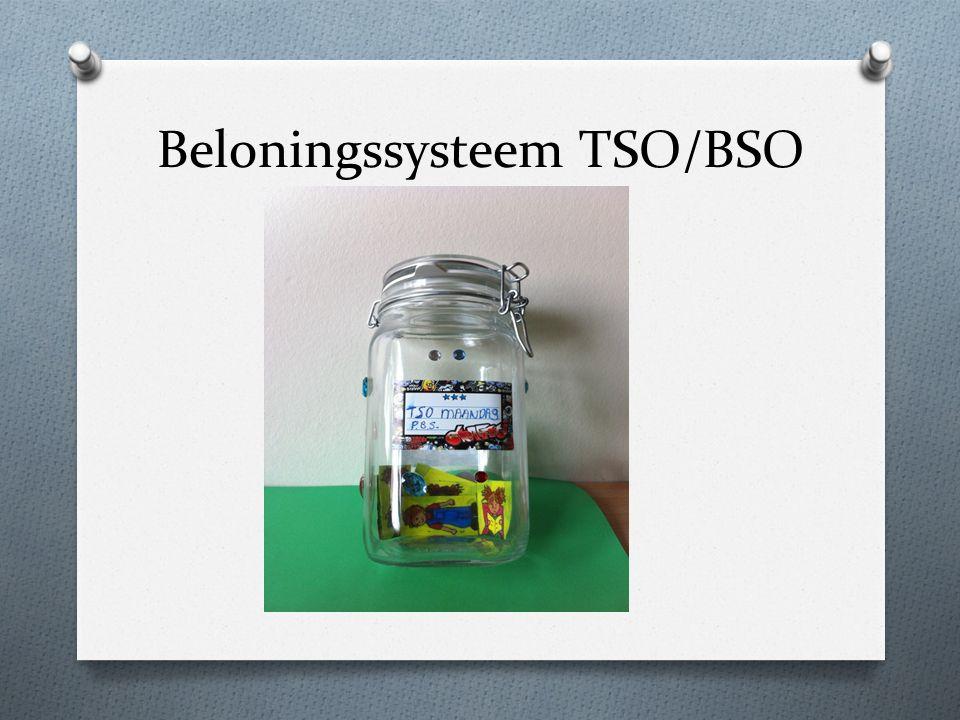 Beloningssysteem TSO/BSO