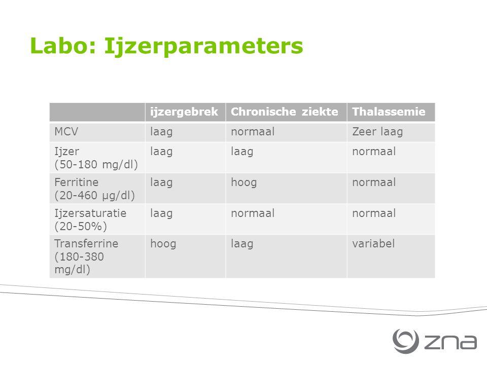 Labo: Ijzerparameters