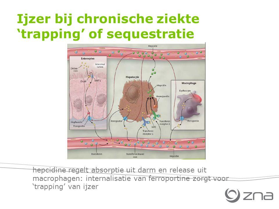 Ijzer bij chronische ziekte 'trapping' of sequestratie