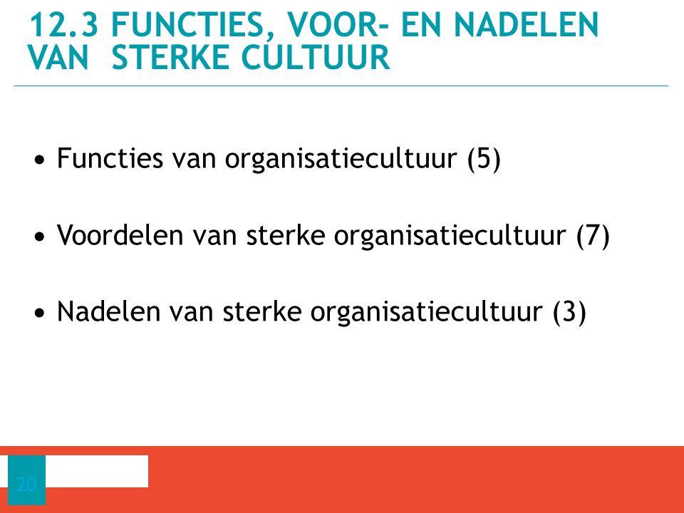 12.3 Functies, voor- en nadelen van sterke cultuur