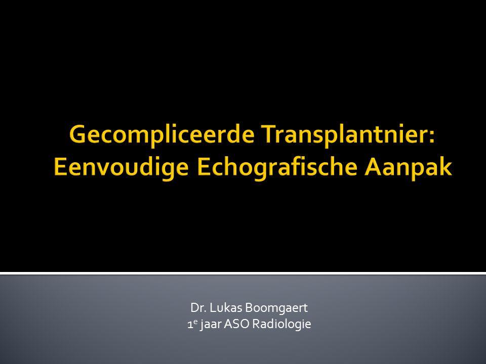 Gecompliceerde Transplantnier: Eenvoudige Echografische Aanpak