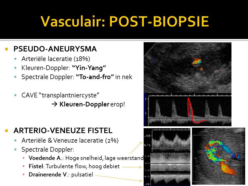 Vasculair: POST-BIOPSIE