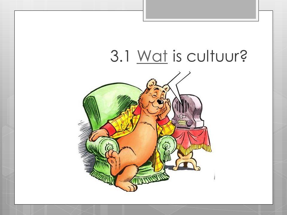 3.1 Wat is cultuur