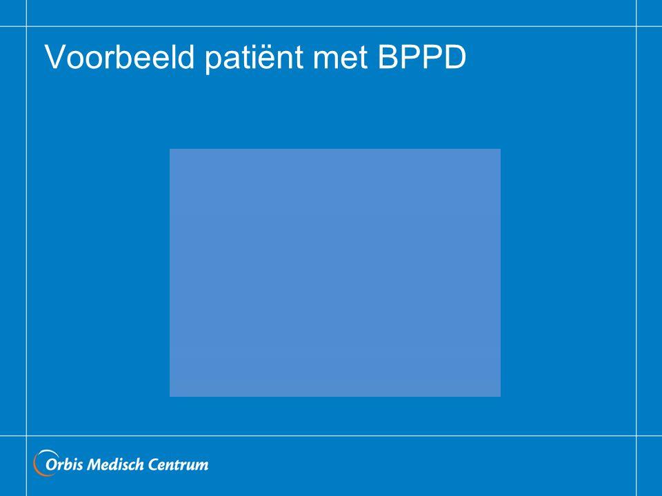 Voorbeeld patiënt met BPPD