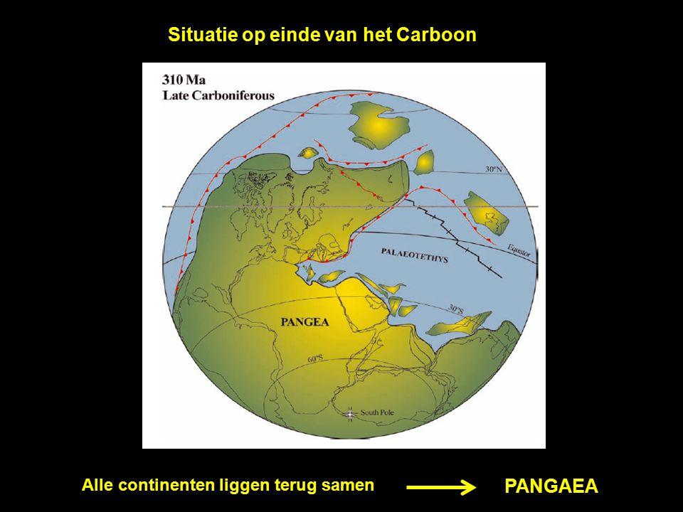 Situatie op einde van het Carboon Alle continenten liggen terug samen