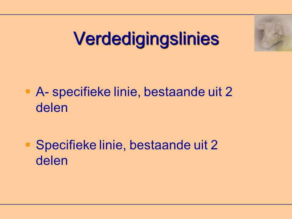 Verdedigingslinies A- specifieke linie, bestaande uit 2 delen