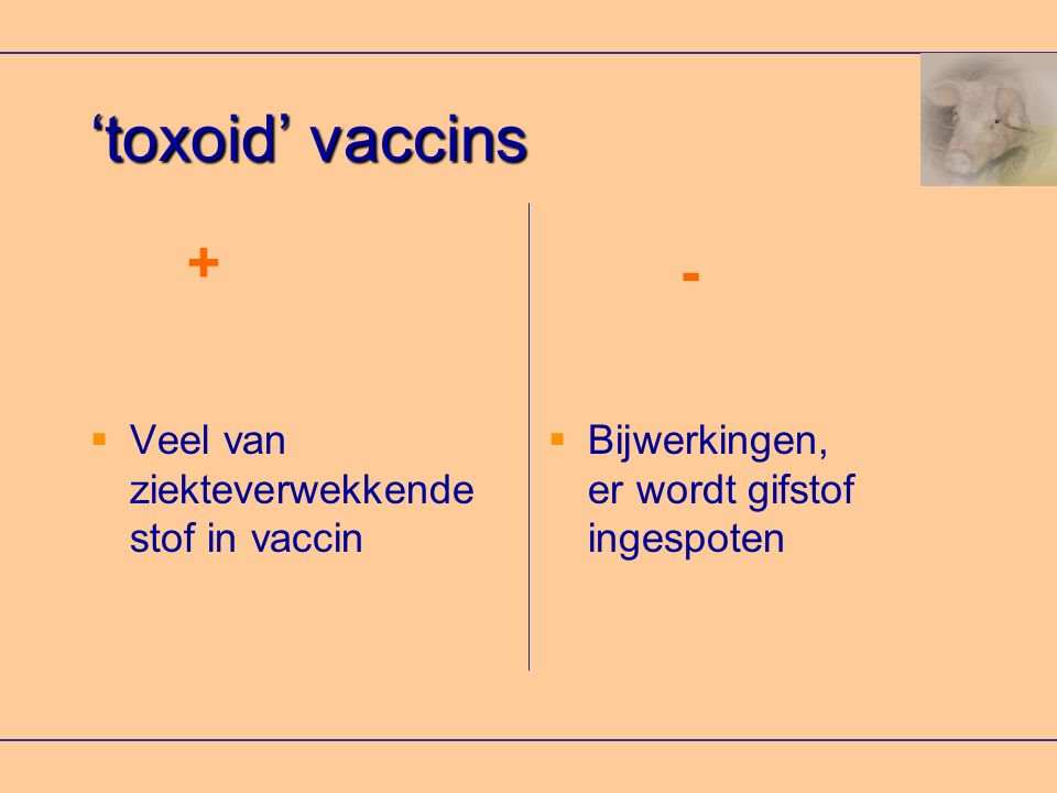 'toxoid' vaccins + - Veel van ziekteverwekkende stof in vaccin