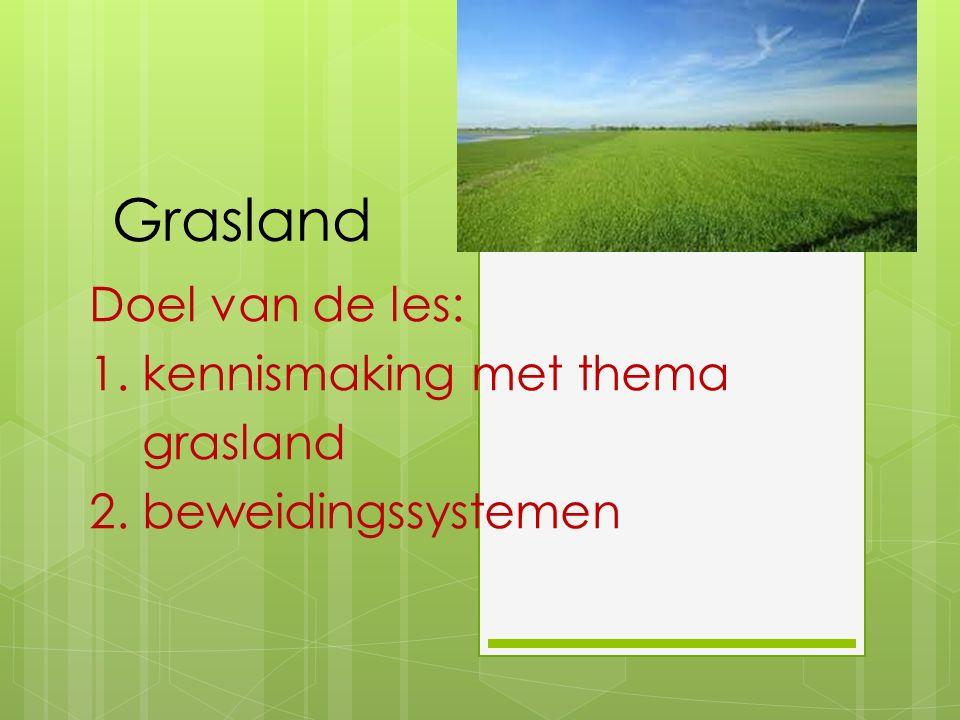 Grasland Doel van de les: 1. kennismaking met thema grasland