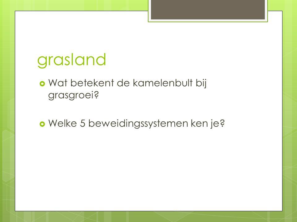 grasland Wat betekent de kamelenbult bij grasgroei