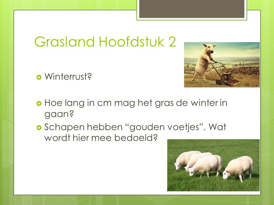 Grasland Hoofdstuk 2 Winterrust