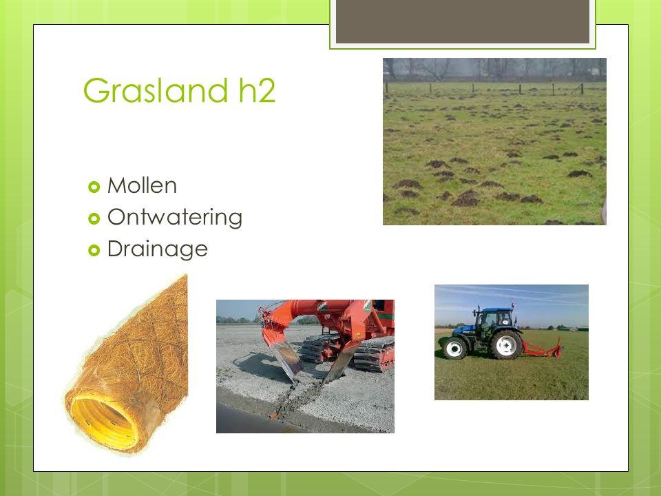 Grasland h2 Mollen Ontwatering Drainage