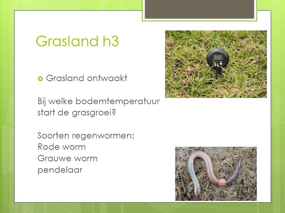 Grasland h3 Grasland ontwaakt Bij welke bodemtemperatuur
