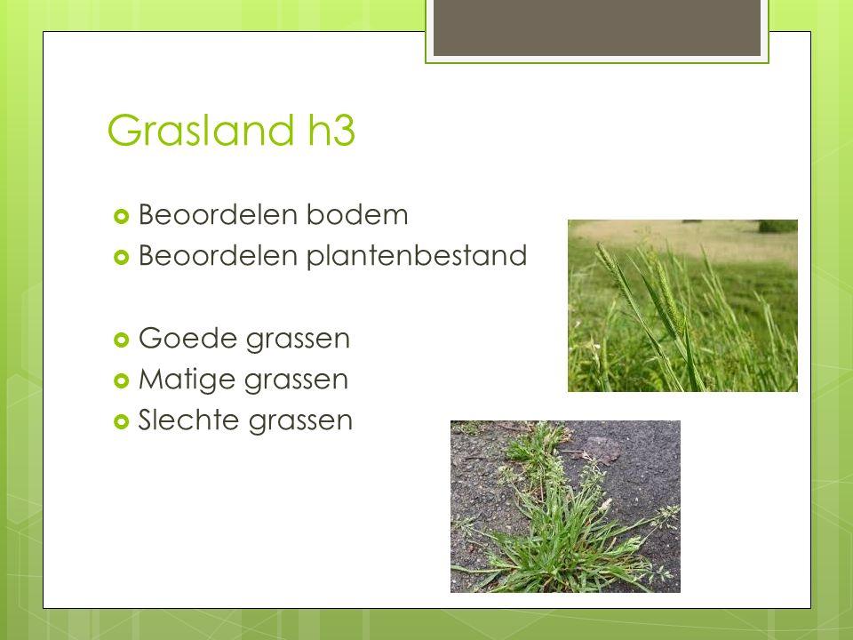 Grasland h3 Beoordelen bodem Beoordelen plantenbestand Goede grassen