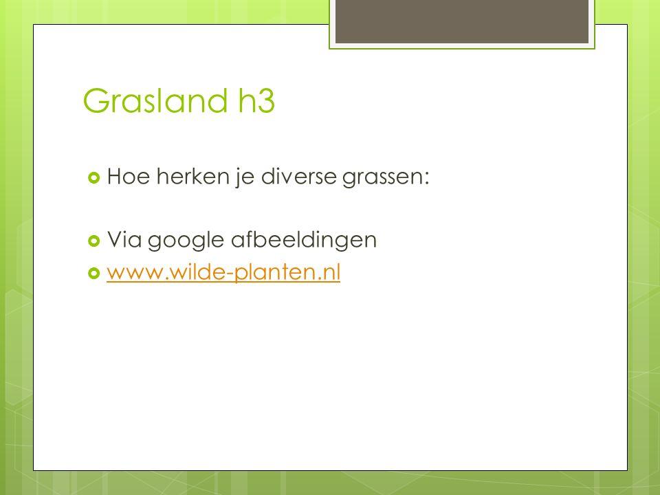 Grasland h3 Hoe herken je diverse grassen: Via google afbeeldingen