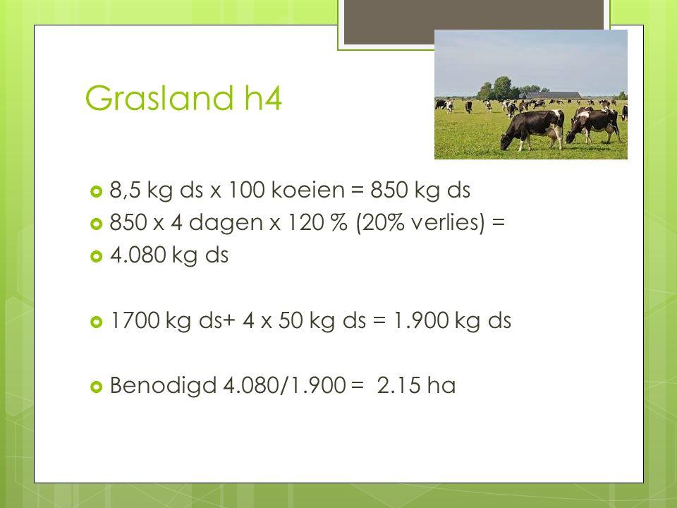 Grasland h4 8,5 kg ds x 100 koeien = 850 kg ds