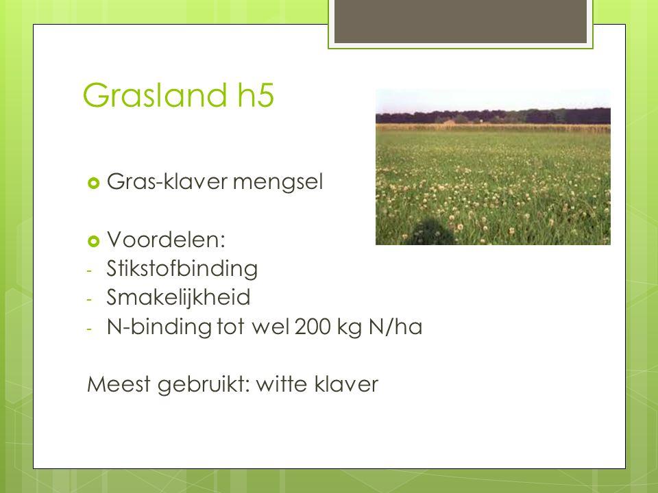 Grasland h5 Gras-klaver mengsel Voordelen: Stikstofbinding