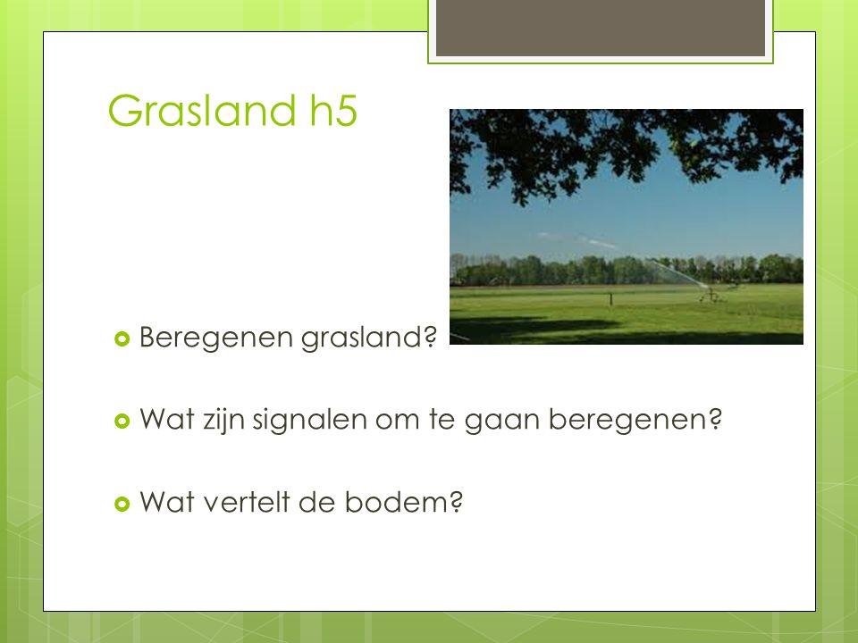 Grasland h5 Beregenen grasland