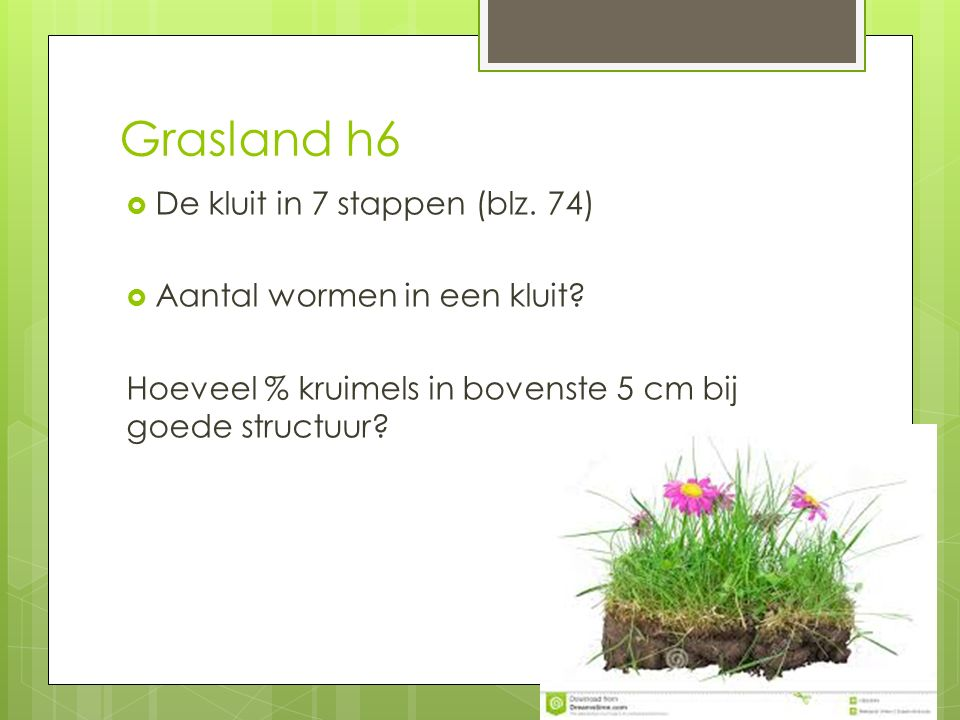 Grasland h6 De kluit in 7 stappen (blz. 74)