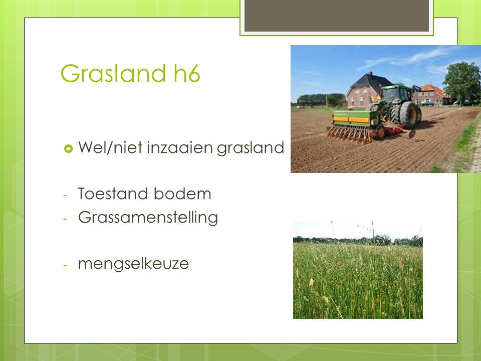 Grasland h6 Wel/niet inzaaien grasland Toestand bodem