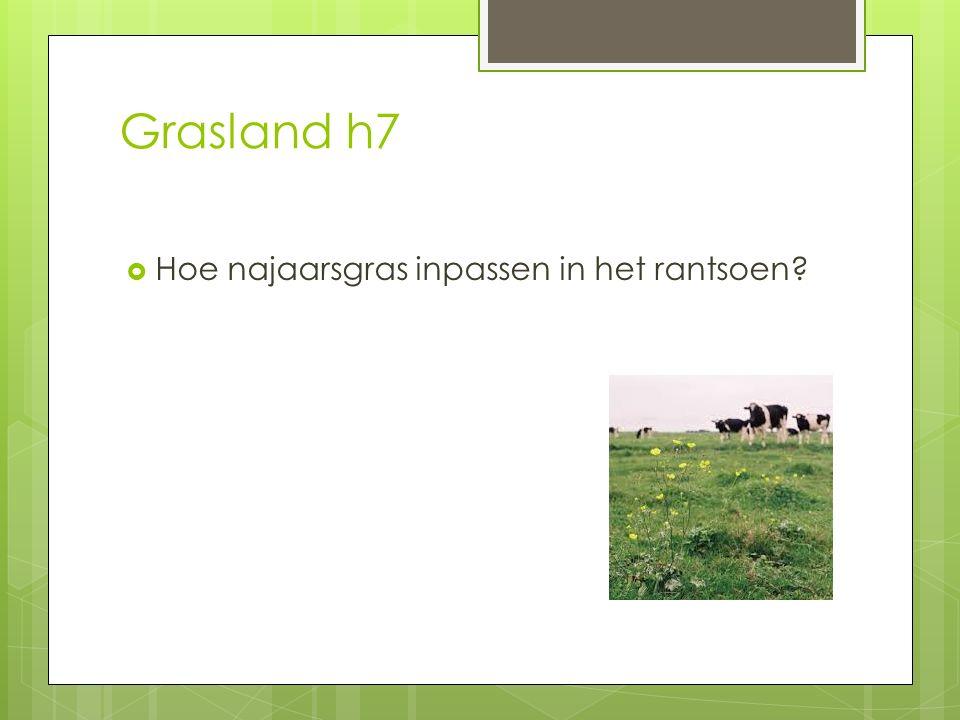 Grasland h7 Hoe najaarsgras inpassen in het rantsoen