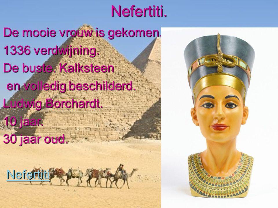 Nefertiti. De mooie vrouw is gekomen. 1336 verdwijning.