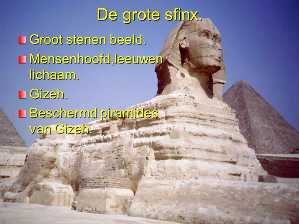 De grote sfinx. Groot stenen beeld. Mensenhoofd,leeuwen lichaam.