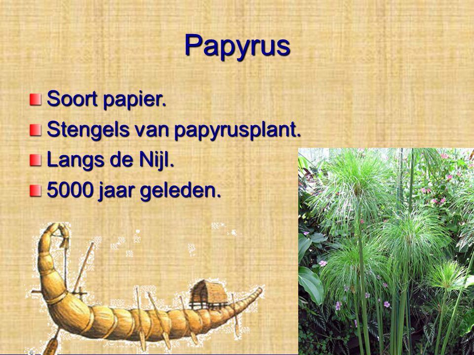 Papyrus Soort papier. Stengels van papyrusplant. Langs de Nijl.