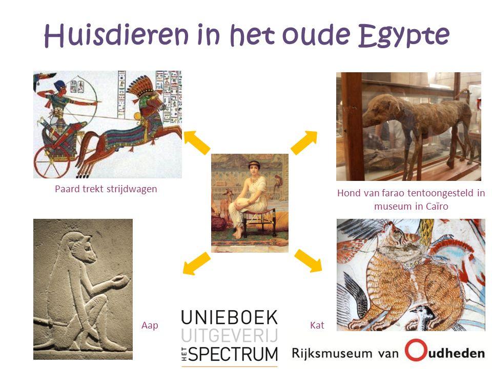 Huisdieren in het oude Egypte