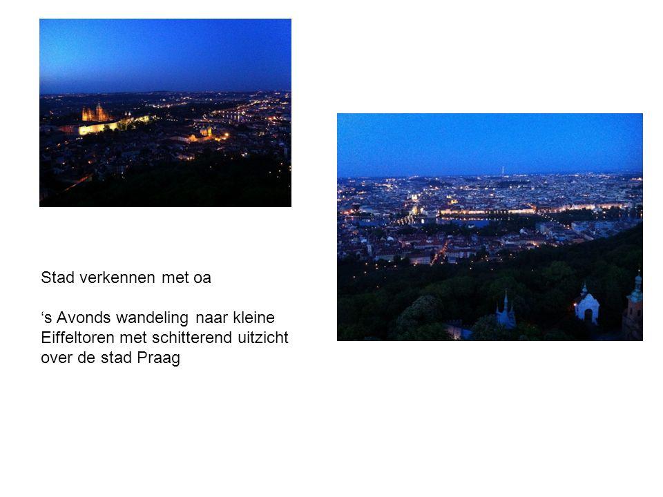 Stad verkennen met oa 's Avonds wandeling naar kleine Eiffeltoren met schitterend uitzicht over de stad Praag.