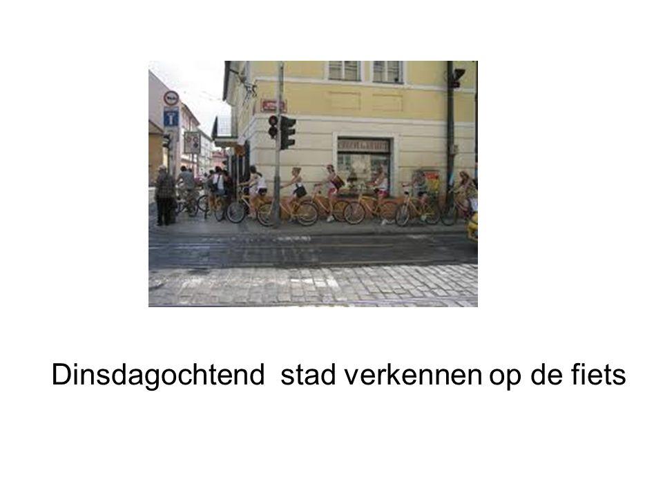 Dinsdagochtend stad verkennen op de fiets