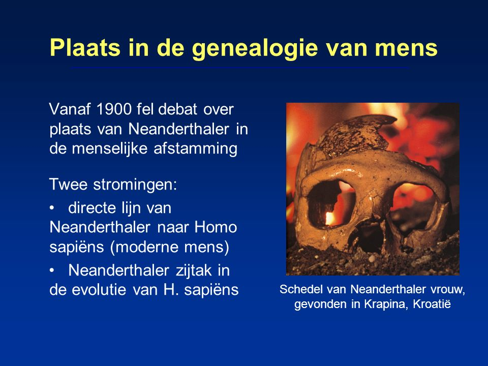 Plaats in de genealogie van mens