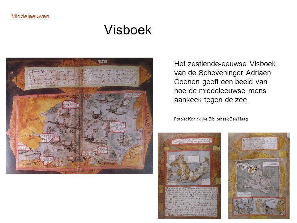 Middeleeuwen Visboek
