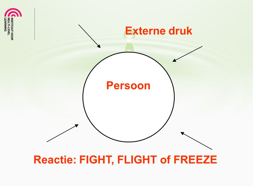 Externe druk Persoon Reactie: FIGHT, FLIGHT of FREEZE