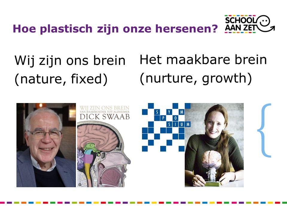 Hoe plastisch zijn onze hersenen