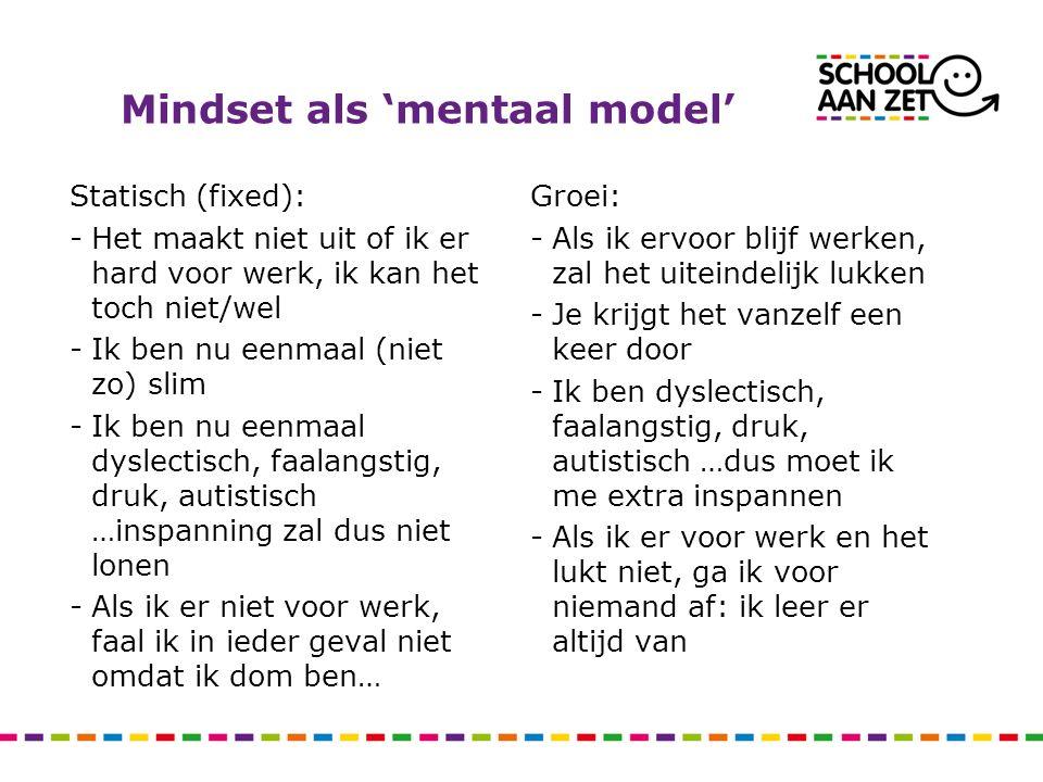 Mindset als 'mentaal model'