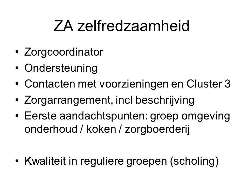 ZA zelfredzaamheid Zorgcoordinator Ondersteuning