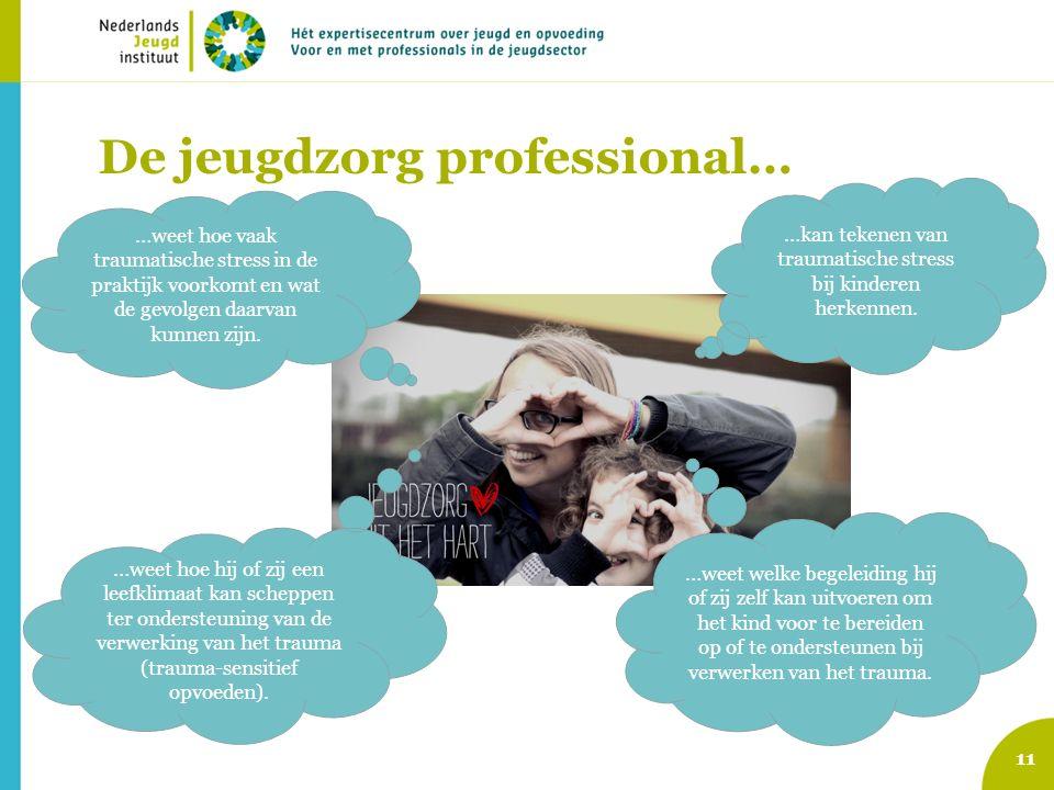 De jeugdzorg professional…
