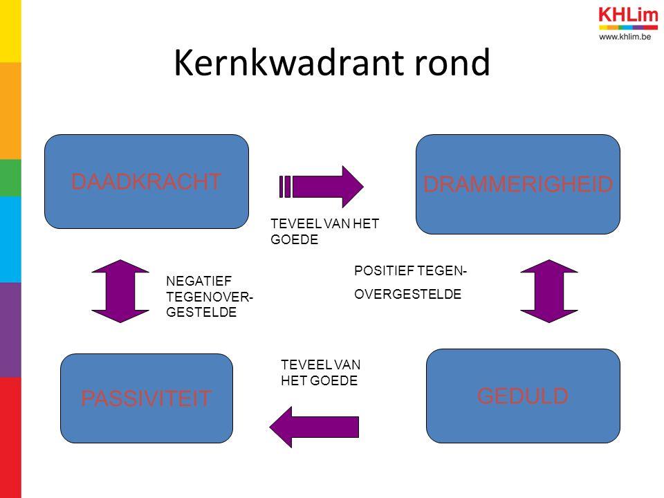 Kernkwadrant rond DAADKRACHT DRAMMERIGHEID GEDULD PASSIVITEIT