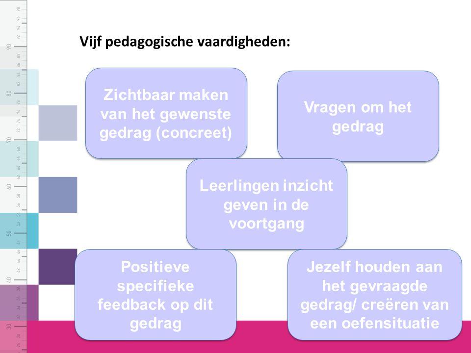 Vijf pedagogische vaardigheden: