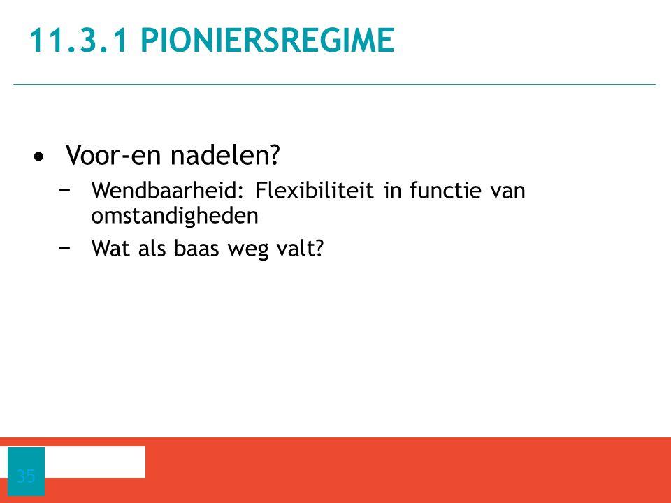 11.3.1 pioniersregime Voor-en nadelen