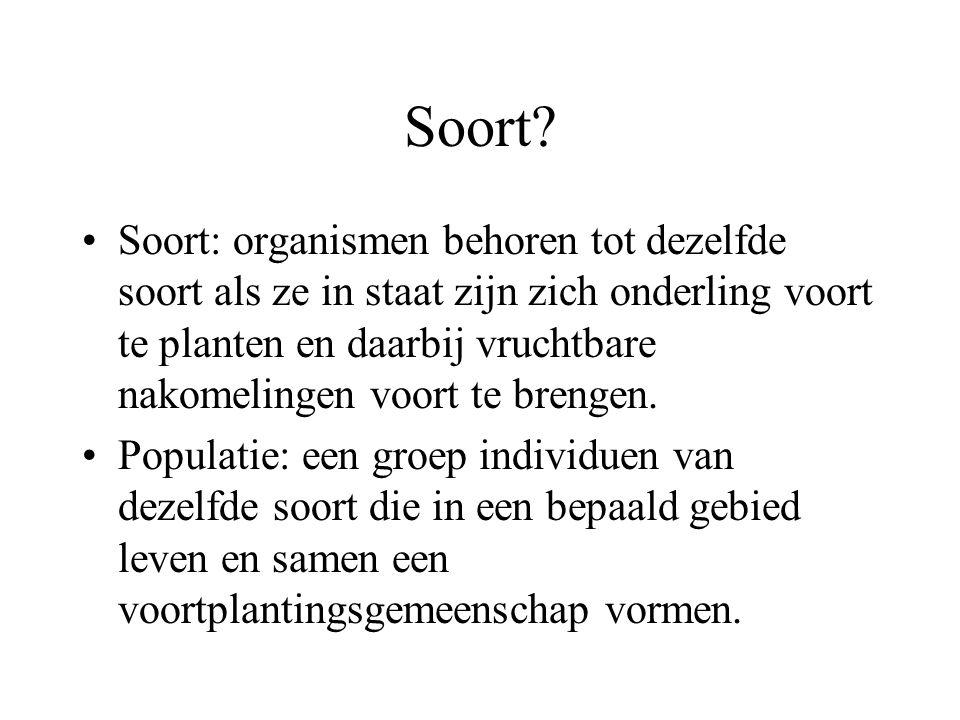 Soort