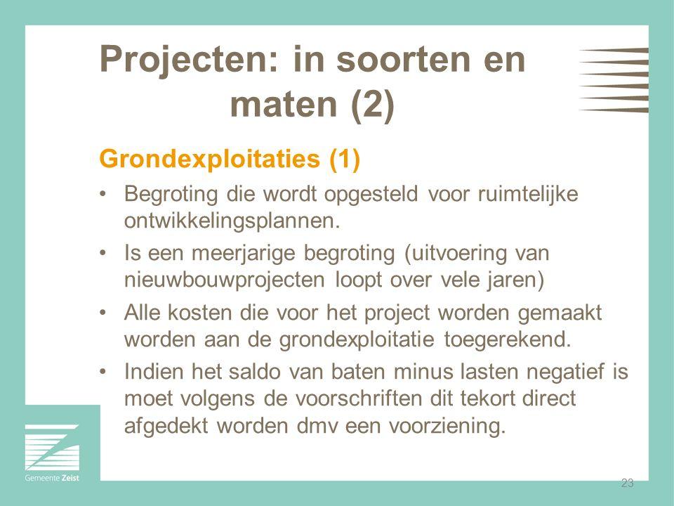 Projecten: in soorten en maten (2)